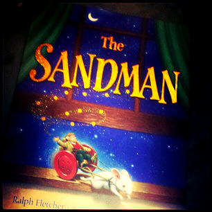 TheSandmanBook