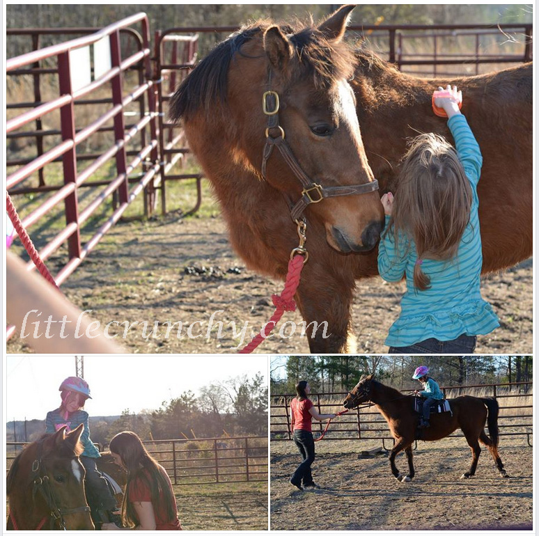 horse_riding_lessons_age_6