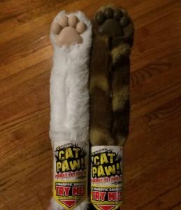 My_Cat_Paw1