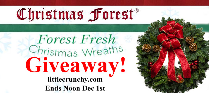 Giveaway_Holiday_Gift_Guide_Wreath