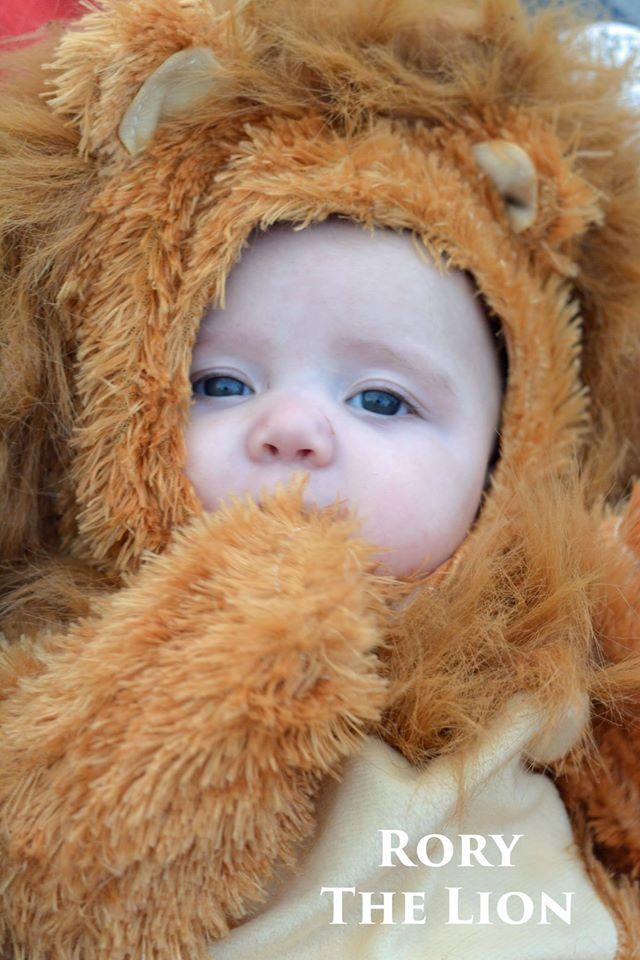baby lion halloween 2015