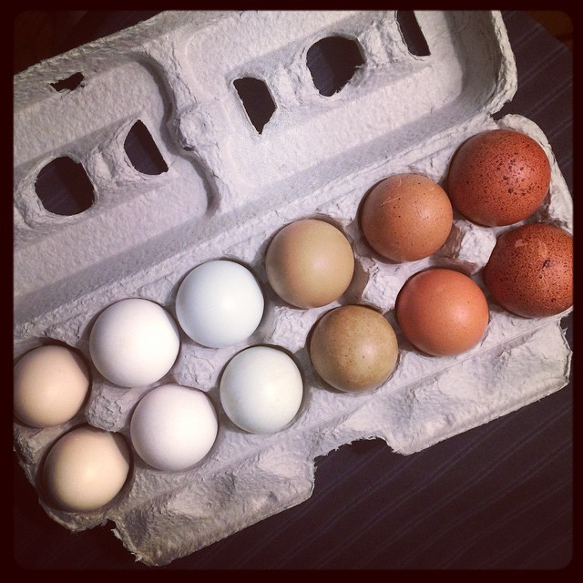 Easter Eggs Natural