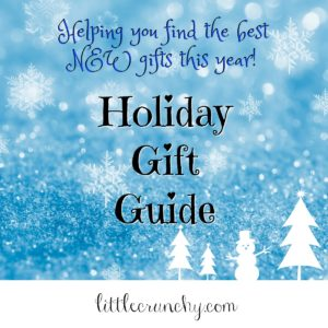 Holiday Gift Guide Blogger