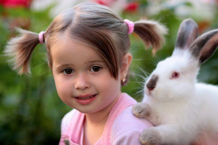 Rabbit Friendship Supplies Love Girl
