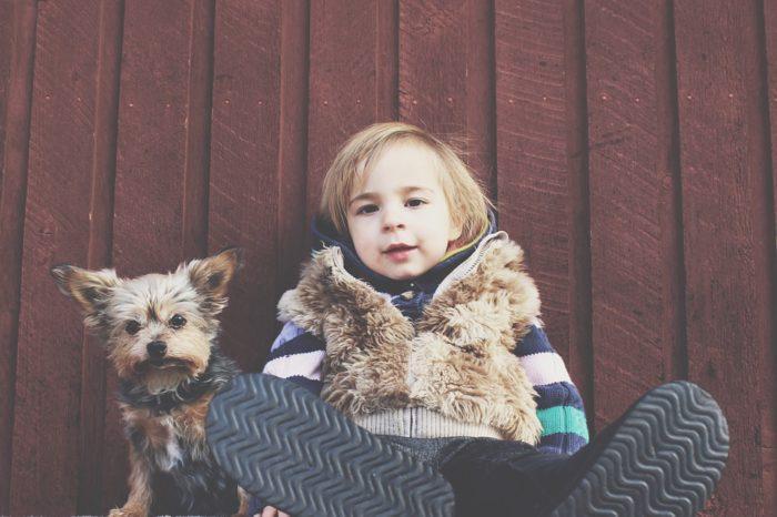 child-puppy